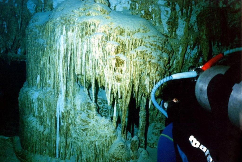 Find Adventure at a Cenote Dive Site